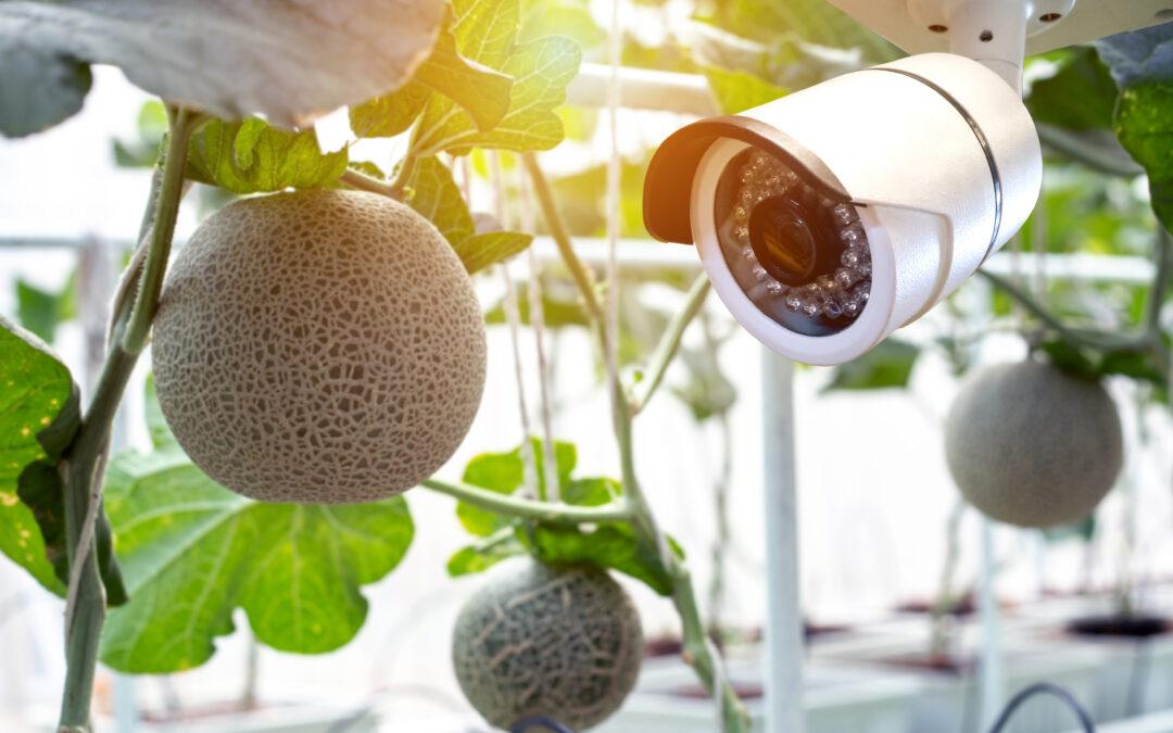 グリーンハウス監視・設備点検用 ステレオカメラ
